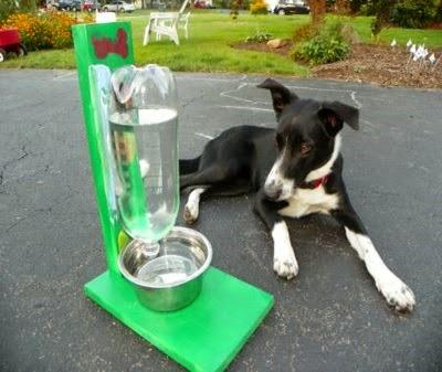Bebedero reciclado para mascotas