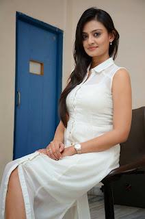 Actress Nikitha Narayan Picture Gallery in White Dress at Ladies and Gentleman Movie Press Meet  36.JPG