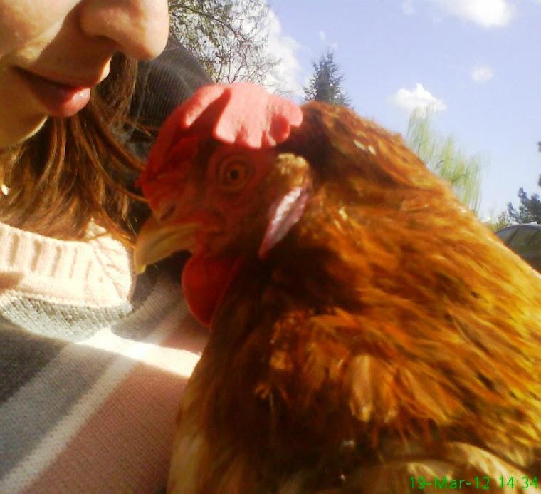 Simo e Isabella gallina salvata