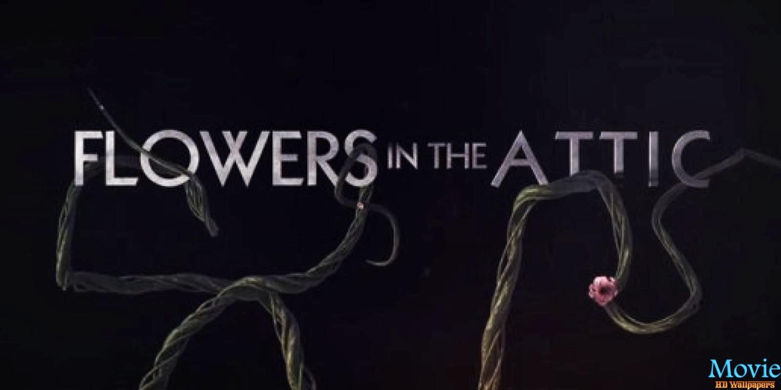 """Series Anatomy TV Movie Time """"Flores en el ático"""""""