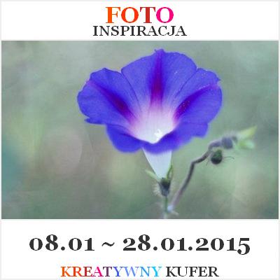 http://kreatywnykufer.blogspot.com/2015/01/wyzwanie-foto-inspiracja-5.html