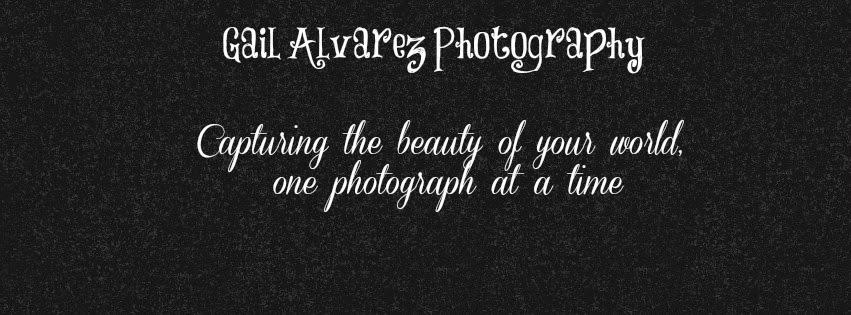 Gail Alvarez Photography