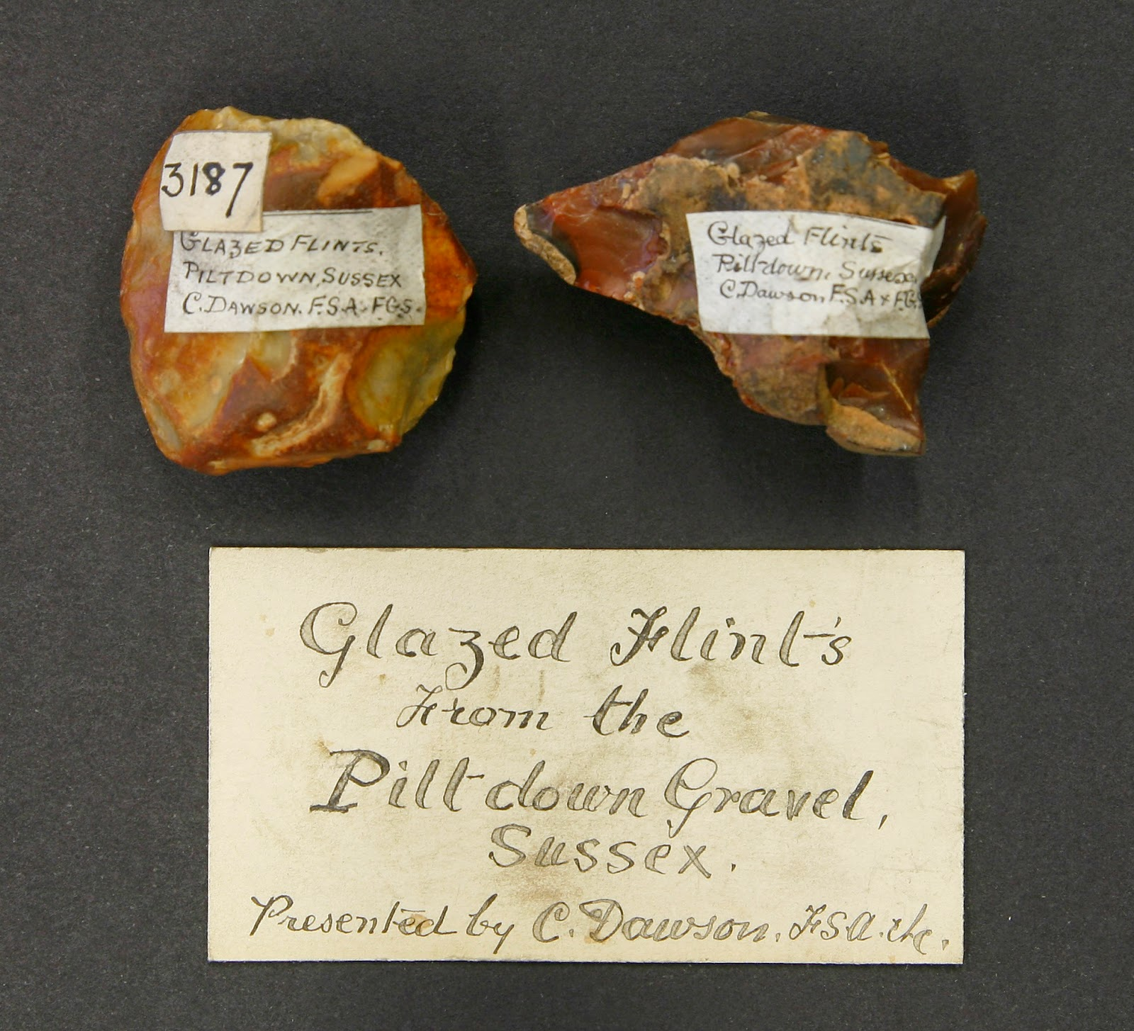 Glazed flints from Piltdown gravel, Sussex