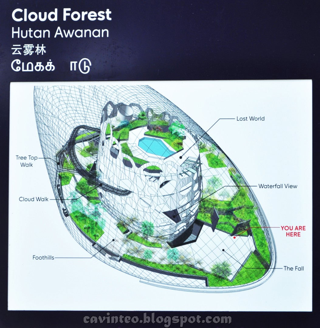 Garden By The Bay Floor Plan entree kibbles: cloud forest [云雾林] in the daytime @ gardens