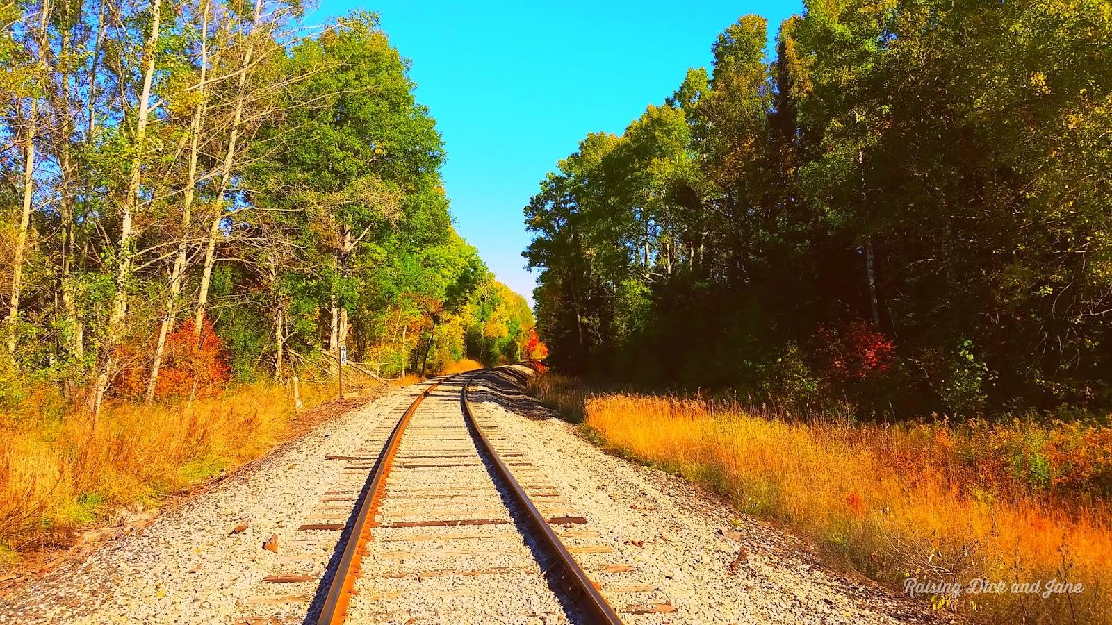 Railroad photo in Boyne Falls, MI