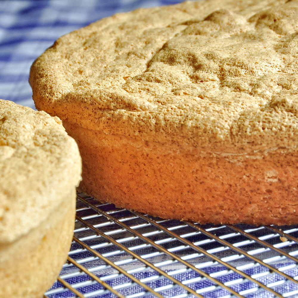 Best ever sponge cake recipe rock recipes the best food amp photos from