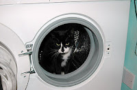 how to get rid of smell in washing machine