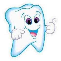 diente sano