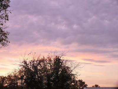 dawn sky