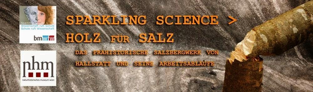 sparkling science - holz für salz