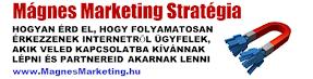 Fő partnerünk (webmarketing)