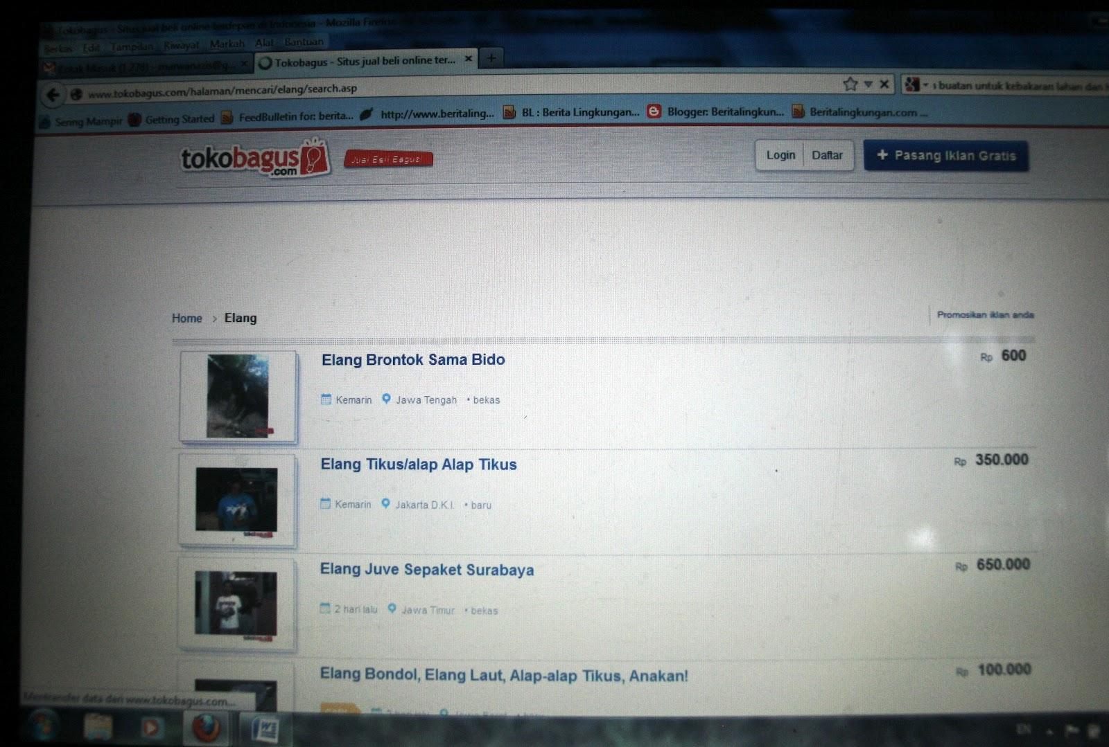 http://3.bp.blogspot.com/-wpts75KC6hQ/UCmVtHAT7ZI/AAAAAAAAB2E/8urQab0hC2M/s1600/jual%2Belang%2Bdi%2Btokobagus.com.jpg