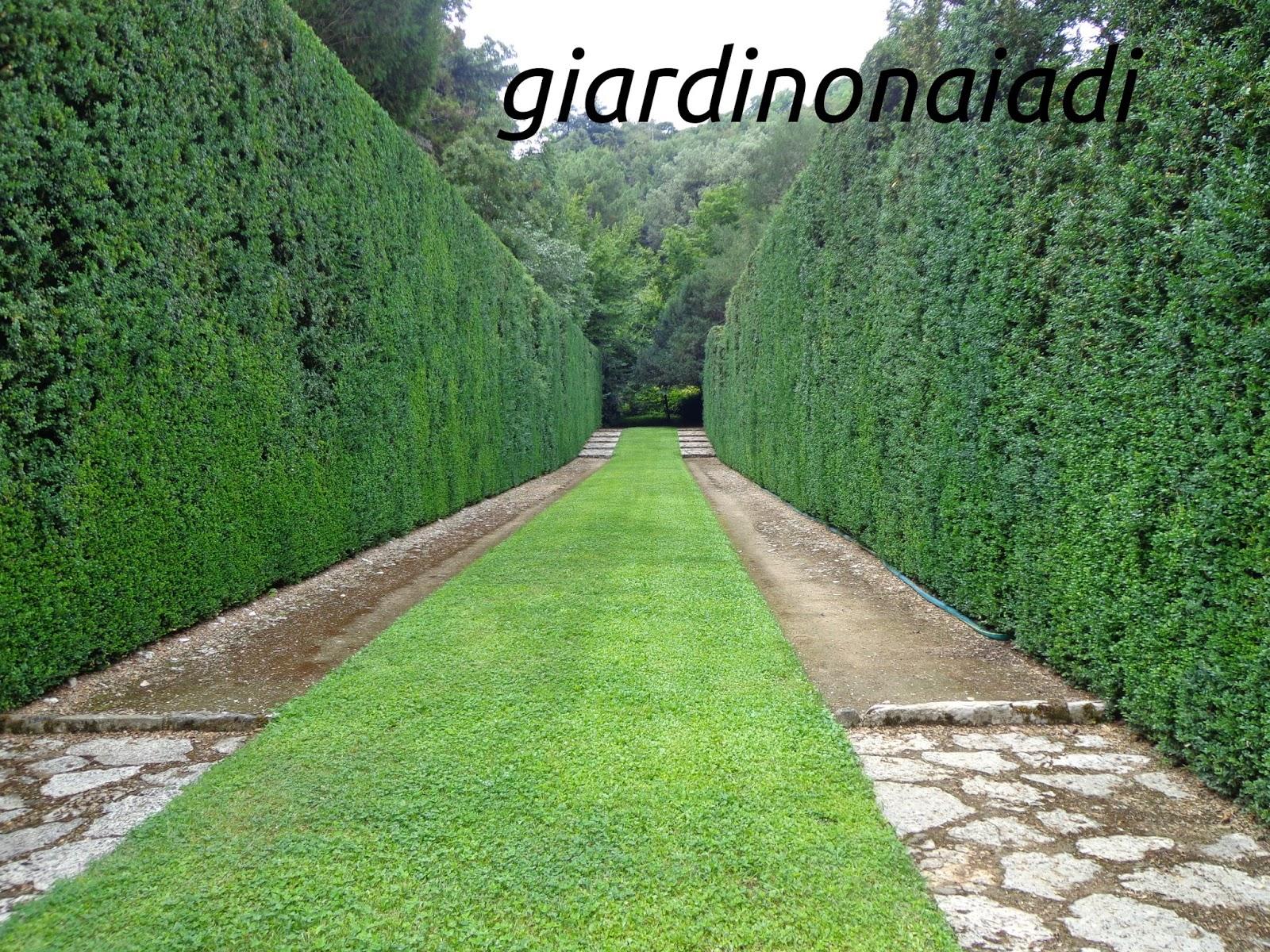 Il giardino delle naiadi la piccola versailles il - Viali da giardino ...