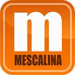 I miei articoli su Mescalina