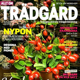 Allt om Trdgrd nr14/12