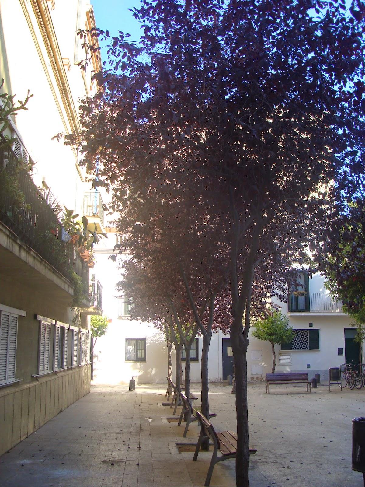 El rincon de un jardin rincones con encanto en barcelona pla a prim - Rincones de jardines con encanto ...