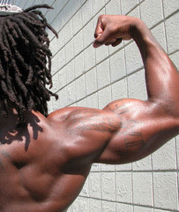 Finest Bicep Workouts For Tricep / Bicep Size