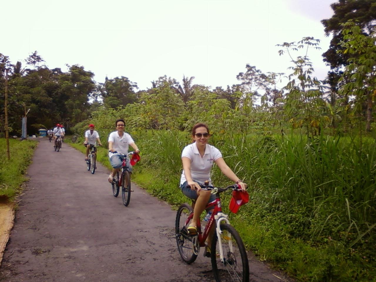 Asyiknya Bersepeda Di Desa Wisata Pentingsari Yogyakarta