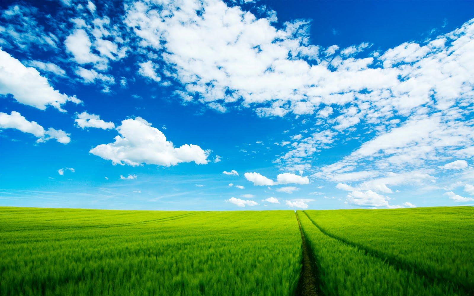 http://3.bp.blogspot.com/-wr_EKgKM2pA/TtyJipymDXI/AAAAAAAAA-4/GZ8qISFwhB8/s1600/sky-wallpaper-hd-10-778134.jpg