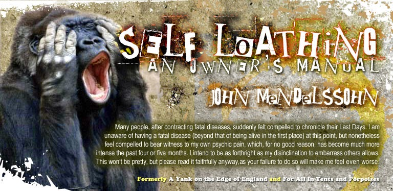 Self-Loathing: An Owner's Manual