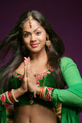 karthika nair spicy hot photo shoot stills