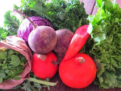 biologische regionale groenten van Lekker Lokaal