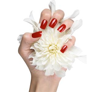 nails Como cuidar de suas mãos