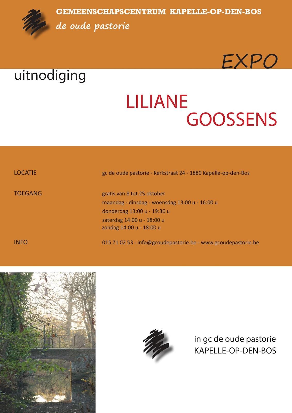 Goossens Keukens Belgie : Aquarel Liliane Goossens Aquarel Tentoonstelling Liliane