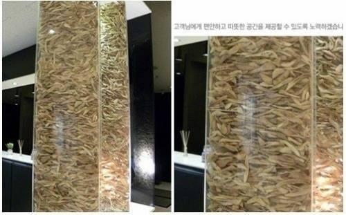 Huesos de cirugías maxilofaciales exhibidos en una clínica estética de Corea