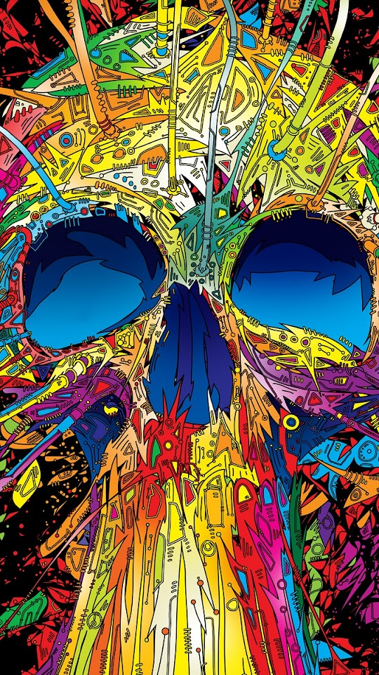 Abstract Multicolored Skull  Galaxy Note HD Wallpaper