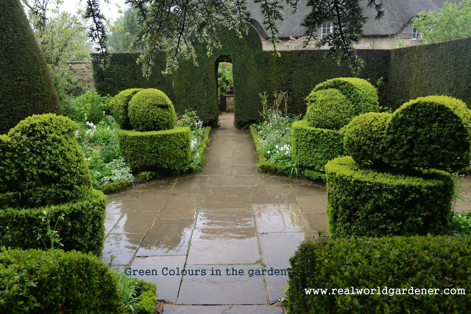 Real world gardener green colours in design elements for Garden design podcast