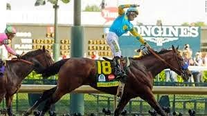 American Pharoah's hard fought victory
