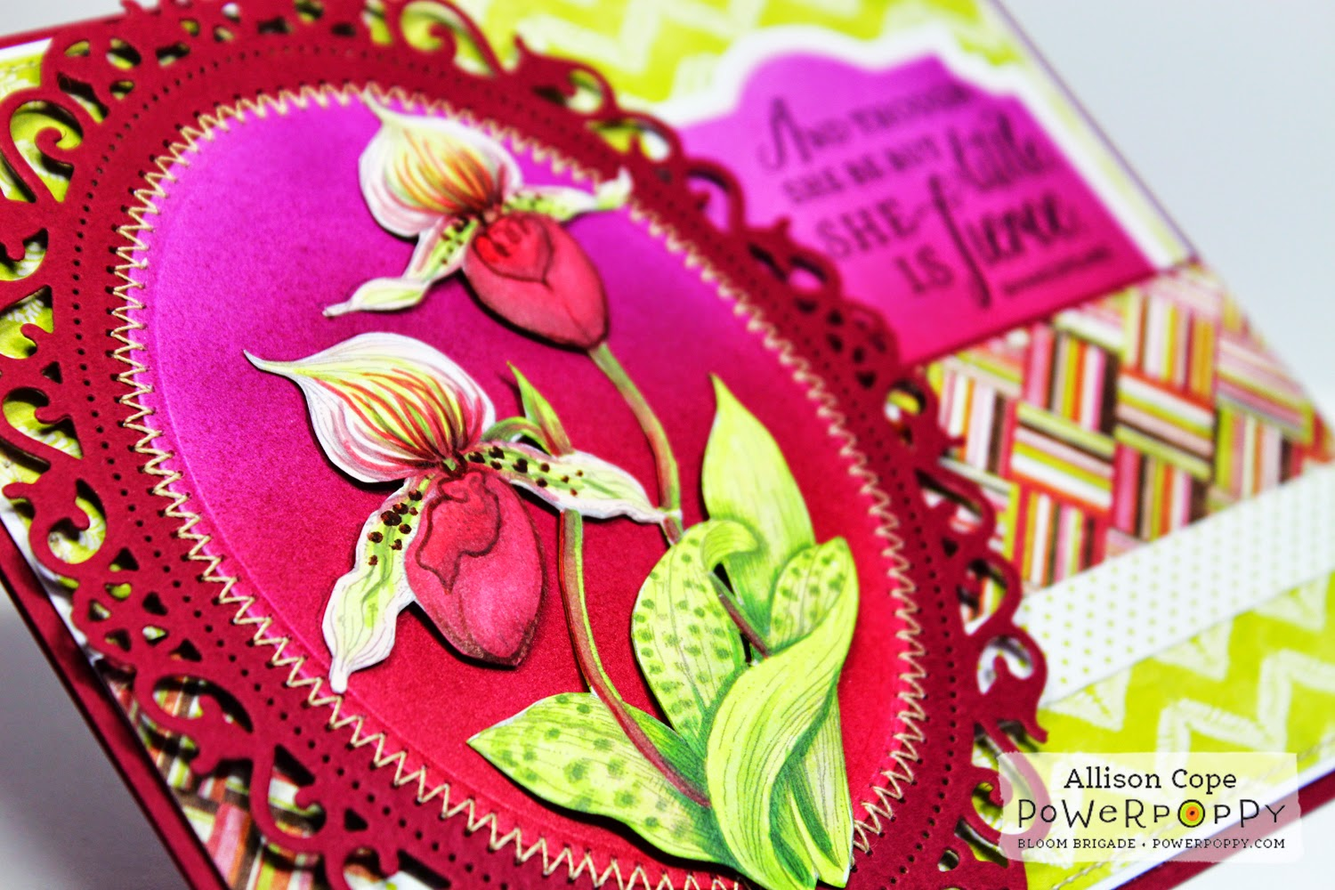 Orchids Rock by Allison Cope for Power Poppy