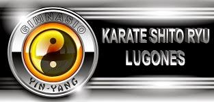 Blog: Karate Shito Ryu Lugones