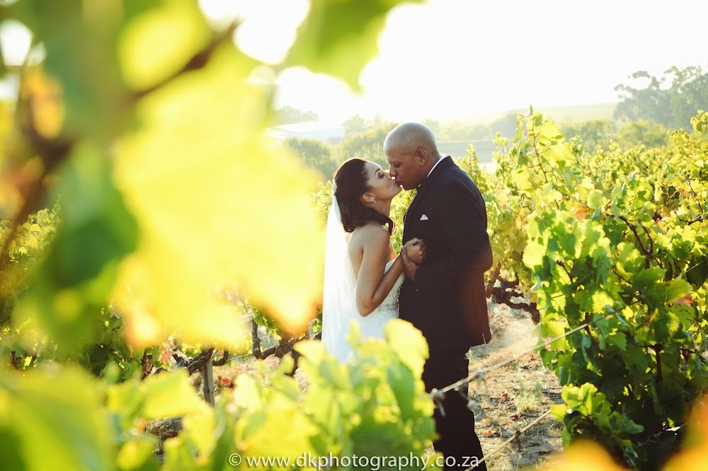 DK Photography DSC_5782 Franciska & Tyrone's Wedding in Kleine Marie Function Venue & L'Avenir Guest House, Stellenbosch  Cape Town Wedding photographer