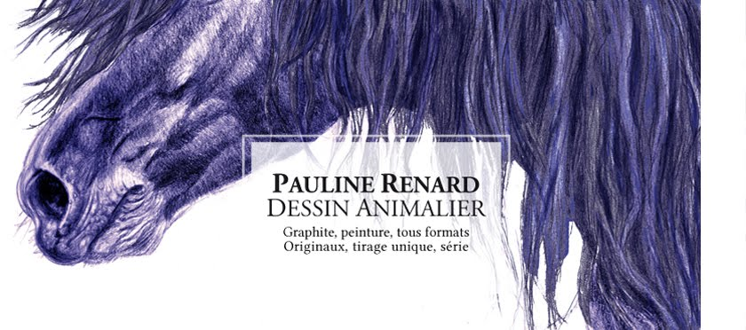 Illustratrice naturaliste & dessin animalier
