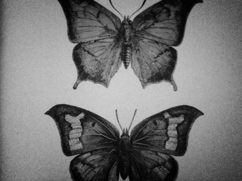 Dark Images Tumblr Scary Twiggys on Tumblr