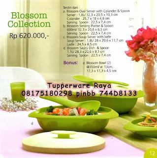 tupperware raya,promo tupperware,katalog tupperware,katalog promo tupperware 2014