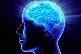 Tips Mempertajam Daya Ingat Otak kita