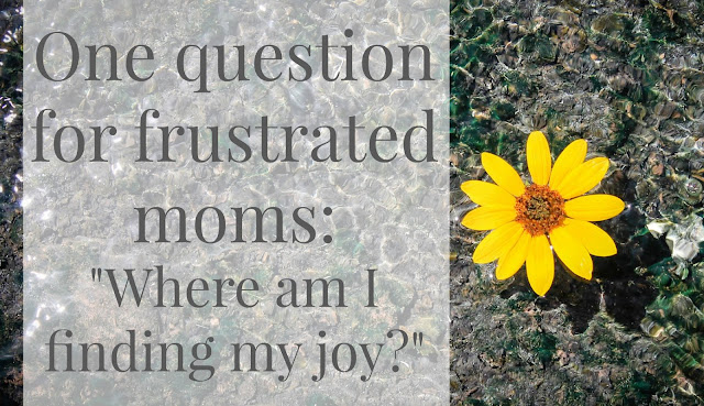 One Question for Frustrated Moms - From the Jensens Blog