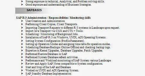 sap basis consultant resume format