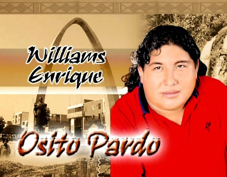 OSITO PARDO :: WILLIAMS ENRIQUE ::  TACNA - PERÚ