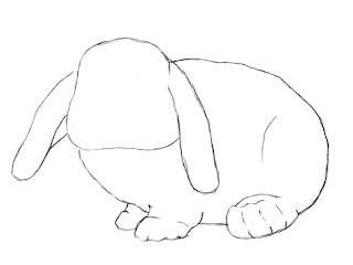 How To Draw A Bunny Step 5