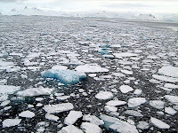Reflection / Absorption of Sea Ice