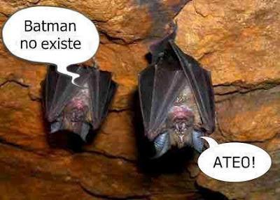 batman murciélagos humor
