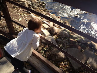toddler at the franklin cider mill