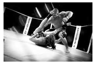 Try Mixed Martial Arts