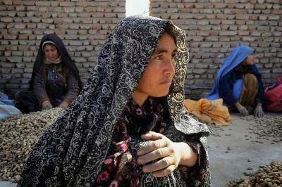 AFGHANISTAN-ECONOMY-PEANUTS