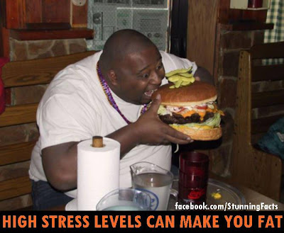 High Stress Level Can Make You Fat