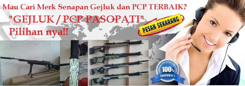 Jual Senapan Angin PCP Murah